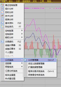 股票软件的公式里,用的一般是什么语言?