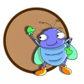 关于蝉的小知识有哪些