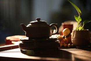 描写好友喝茶话桑麻的古诗句