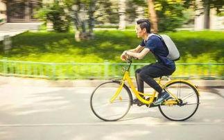 平邑共享单车怎么使用