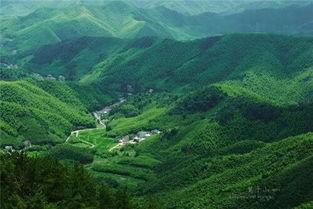 绿映神州⑤ 湖州 玉溪,严守生态保护原则
