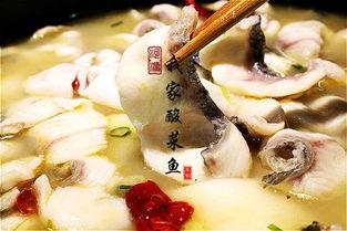 家乡美食铜锅鱼作文开头