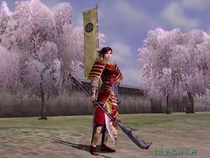 盘点三大智勇无双 美貌动人的日本战国女武将