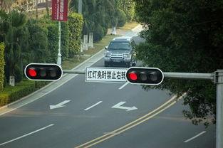 右转弯要不要看信号灯