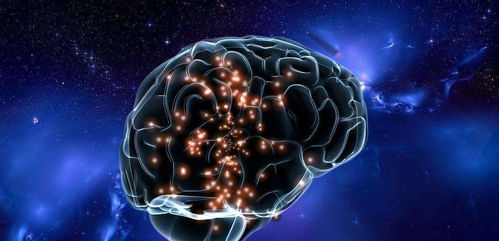 大脑只开发了10%靠谱吗?人类大脑谜团是否隐藏在高维度结构中?