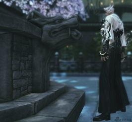 南边盛开的殇之花 剑灵忧郁帝伤情组图