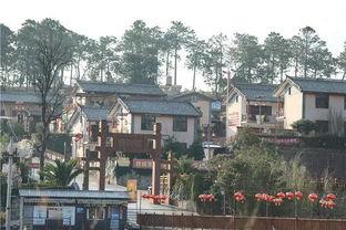 紫溪彝村位于风景秀丽的紫溪山脚,距楚雄市中心12公里,是离城区最近