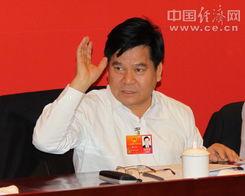 云南代表团讨论审议全国人大常委会工作报告