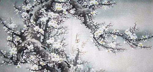 关于梅花与读书的诗句有哪些
