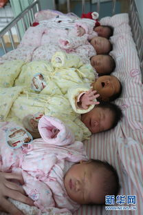 2月8日,在湖北省襄阳市第一人民医院新生儿护理区,猴宝宝睡在育婴床上.