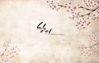 手绘梅花封面韩国PSD素材