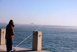 寒潮多久后可以钓鱼