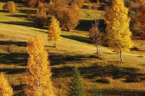 四季优美风景短句子