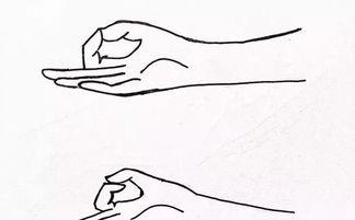 瑜伽的智慧手印什么意思