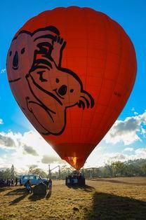 大c乘坐的考拉图案热气球