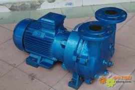 2BV 5111水环式真空泵