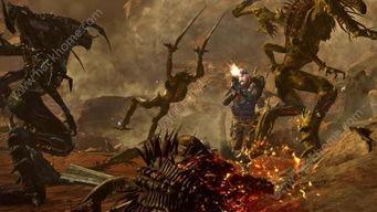 《战地之王》解析狙神养成经验