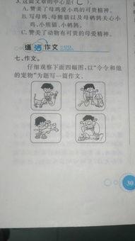 日记双休日400字作文怎么写
