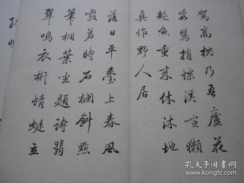 关于写杜甫的诗句