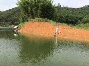武鸣区仙湖水库可以钓鱼吗