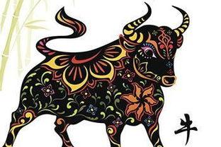 六月属牛的人命运