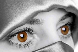 眼部的名言关于美容