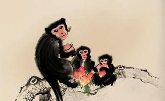 属猴的几月出生最好 属猴人出生月的命运如何(属猴的人出生月份运程