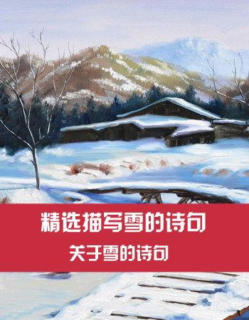 关于雪的诗句描写
