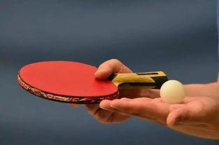关于乒乓球的基本常识