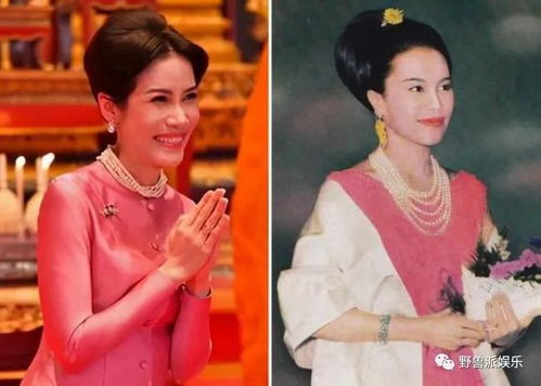 35岁诗妮娜咸鱼翻身造型频频模仿诗丽吉,抱紧婆婆大腿准没错
