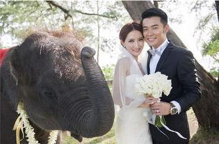 陈赫和前妻许婧