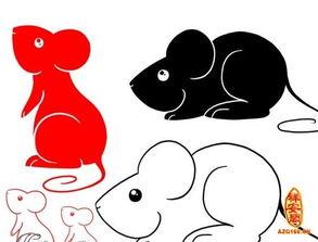 1984年属鼠的五行属什么命,一生命运如何(1984年的人命运如何)