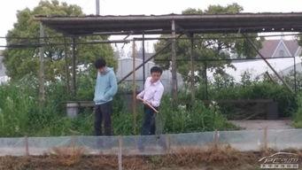 浦东新区农家乐可以钓鱼