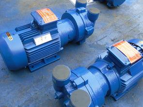 2BV系列水环式真空泵 水环式真空泵