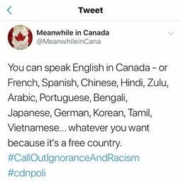 写关于加拿大报告英文怎么说