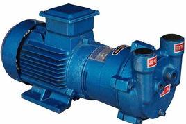 供应2BV系列水环式真空泵