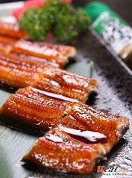 鳗鱼功效(鳗鱼的营养价值)
