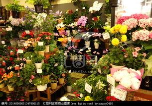 开个鲜花店需要具备些什么
