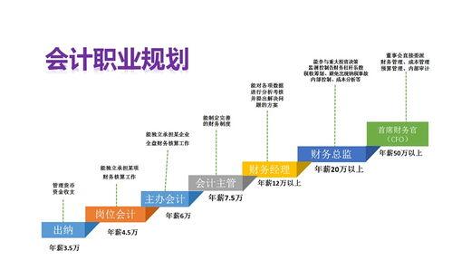 上海3工作经验会计工资多少