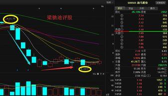 迪马股份 (上海:600565),这只股票属于什么版块的,前期涨幅不大,后市能有补涨吗