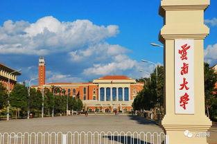 云南大学一本有哪些 自学考试