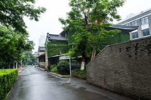 雨中的南京大学
