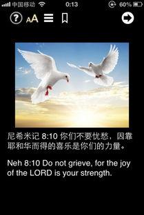 圣经彼此服侍金句