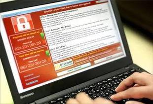 最早网络软件,网络投票软件-飞速吧