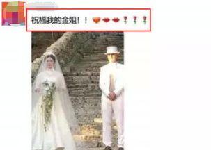 金星与汉斯意大利结婚,现场婚纱照外泄,曾为孩子户口假离婚