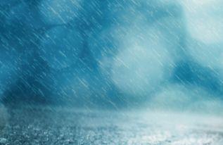 雨后天晴的四客服语