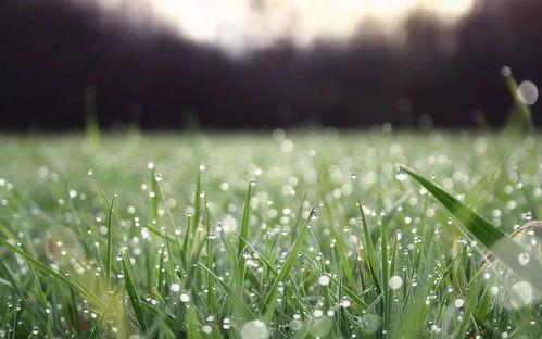 春天像造句