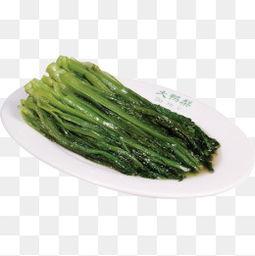 优麦菜(什么叫油麦菜)