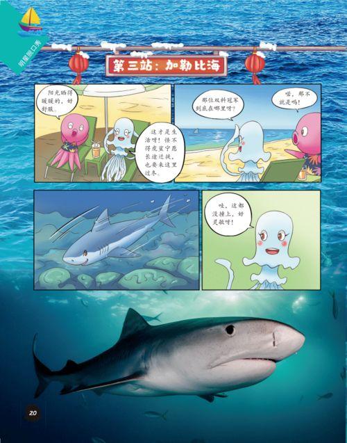 海底世界小知识的秒懂百科