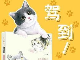 绘画的彩色猫咪大全